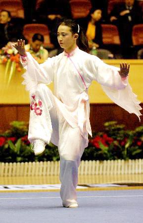 【转载】传统杨式太极拳练功次序 - 杨杨 - 杨杨的博客