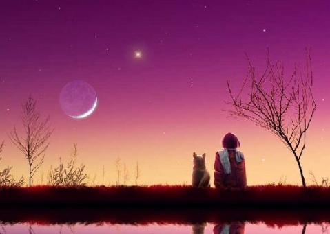 仰望明月 - 雪绒花 - 雪绒花