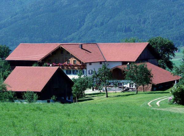德国农村 - Q妹 - bnm369