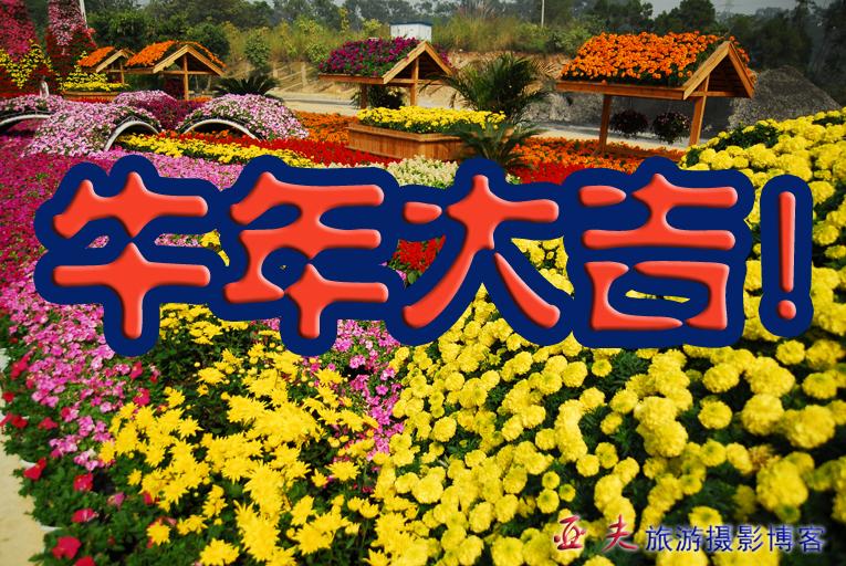 (原创)新春祝福 - 高山长风 - 亚夫旅游摄影博客