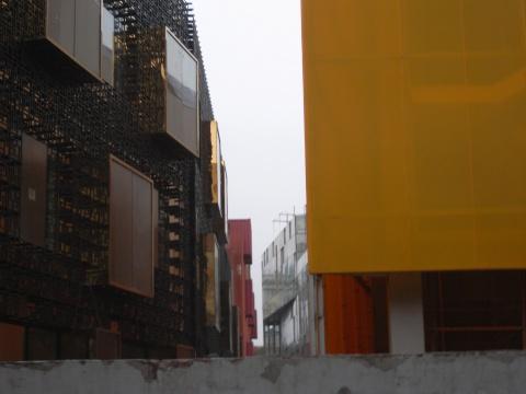 彩色房子 - 发条虫 - 发条虫 [2010]