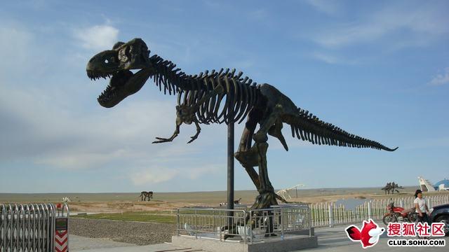 白垩纪恐龙公园图片 - 南子 - 南子的博客