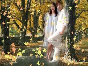 落叶de 日子