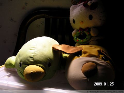 印象2009 之 除夕夜,拉肚子 - 易江南 - 纪念,为了遗忘