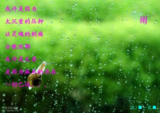 雨 - ■一笑■ - ⊙⊙⊙一笑⊙⊙⊙
