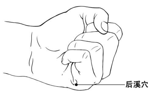 后溪穴——统治一切颈肩腰椎病的神奇大穴 - 布依非非 - 心情花园