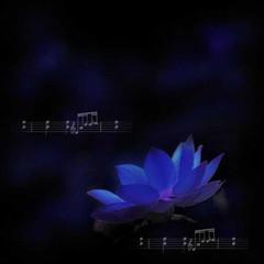 今夜梦里我不孤单(疏勒河的红柳原创) - 疏勒河的红柳 - 疏勒河的红柳