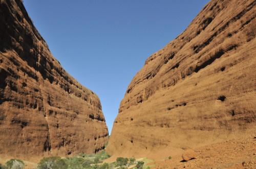 行走在澳大利亚沙漠中(三) - 朱大鸣 - 朱大鸣网易博客