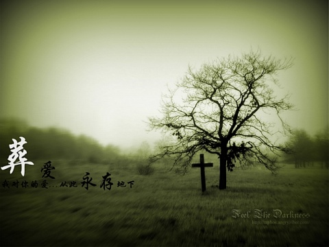 【原创】秋葬 -  SRuije - Shao Ruijie