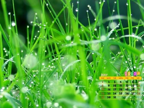 http://album.sina.com.cn/pic/485fe2d543fd04d78d879