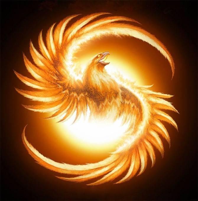 凤凰涅槃,浴火重生——一个美丽的传说 - 一位老人 - 一位老人的博客