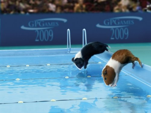 你肯定没有看过的奥运会 - 杨孝文 - 杨孝文的博客