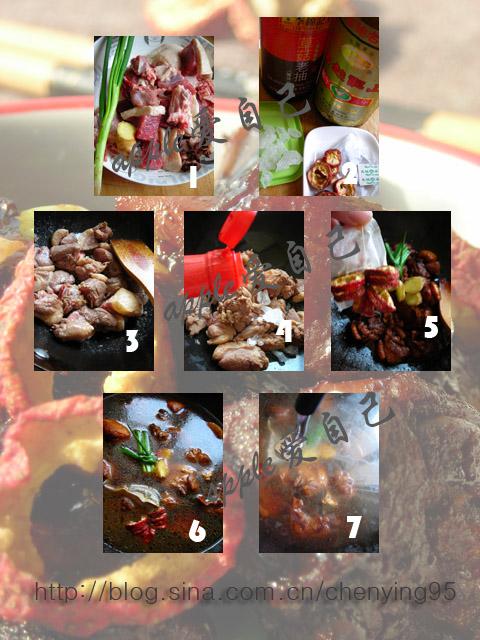 分享:用11个小窍门做11道菜--快速烧红烧鸭肉法 - 可可西里 - 可可西里