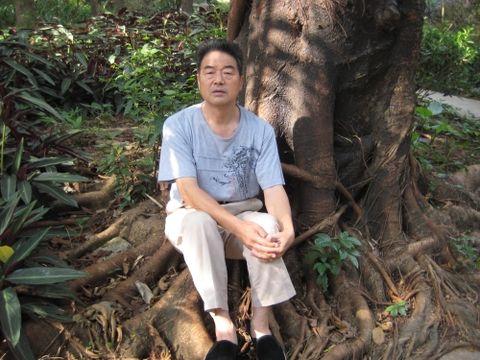 今天(2008年11月20日9:57:25)深圳的天气 - liuyinong1945 - liuyinong1945的博客
