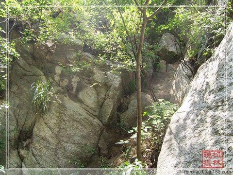 子午峪口漫步 - 枫林晚 - 淡然居