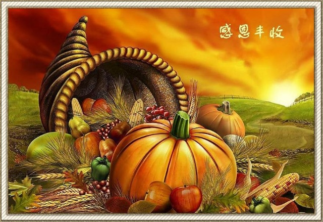 感恩节的由来 - 田野 - 田野博客