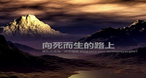 杨石头 智立方系列1:向死而生的路上 - 杨石头 - 杨石头网易分舵