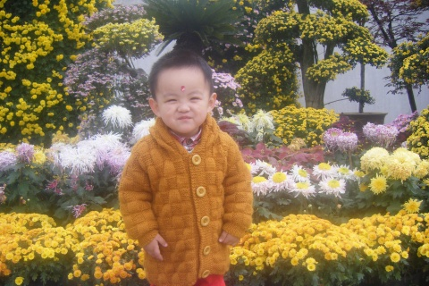 亲子班的第七次上课 - 邗江春晓 - dcj180的博客