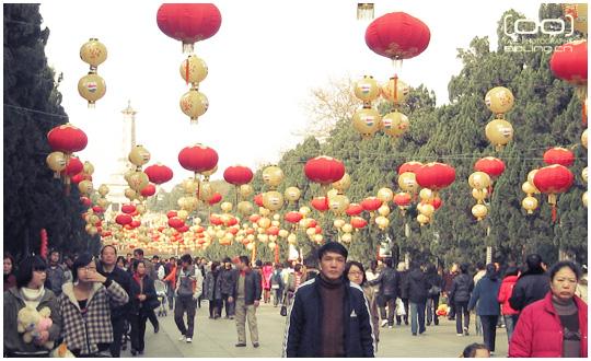 [都灵日志]正月逛公园 - 晨阳 - 晨阳