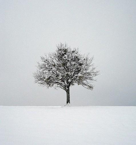 如何利用不同天气拍摄照片