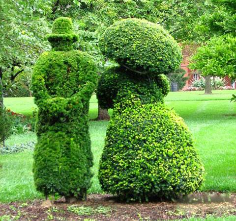 园丁的艺术  - 蓝色生死恋 - 蓝色生死恋的博客