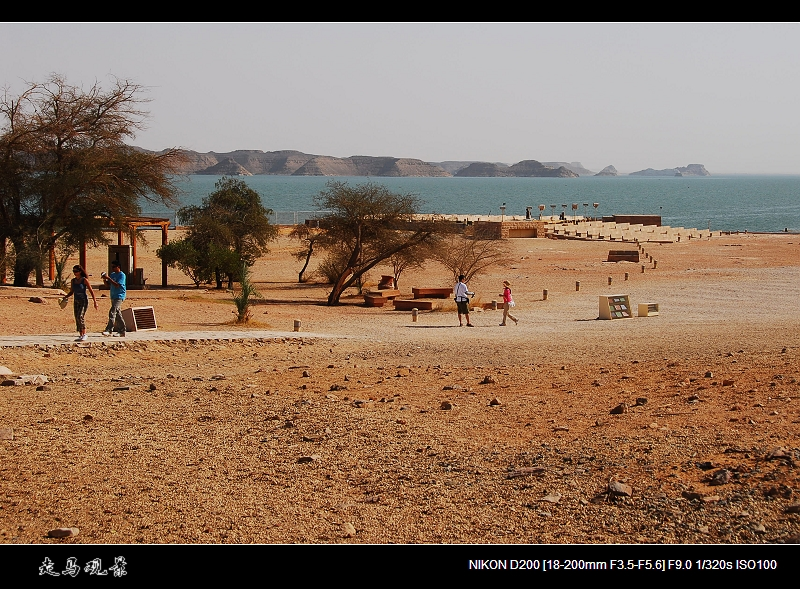 走过埃及 - 西樱 - 走马观景
