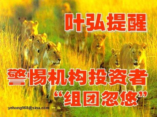 """警惕——谨防机构投资者""""组团忽悠"""" - 叶弘 - 叶弘 谈股市股民股票"""
