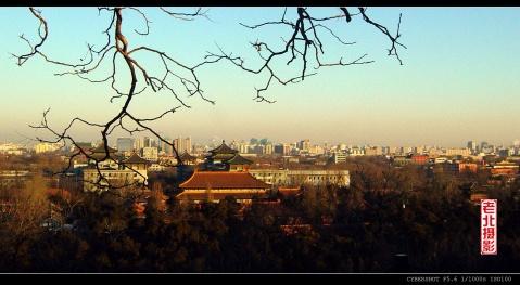 晨观燕京(原创 摄影) - 老北 - 老北