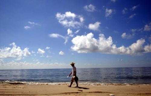 荷包岛的惬意周末 - 麦兜 - 麦兜的幸福生活