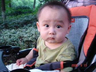 宝宝很规律(照片摄于植物园)