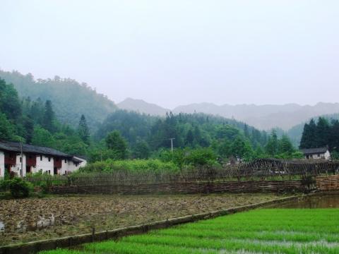 重上井冈山 - 九妹的小木屋 - 九妹的小木屋