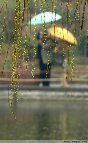 一串雨 - 艾之宁耶 - 自由与和平.博客精神