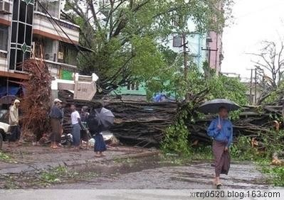 强热带风暴袭击后的缅甸仰光(一) - 纽约缅甸华侨联谊会 - 纽约缅甸华侨联谊会