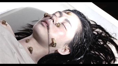 奇谈韩国2007美女超级恐怖大片