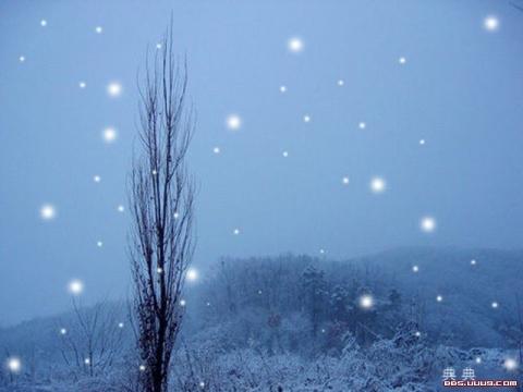 松声-恶冬 ( 散文原创)-中华网博客 - 松声 - 松声的博客