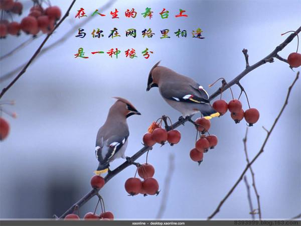 引用 【诗词】赞友情 - 默然 -  抱琴看鹤去  枕石待云归