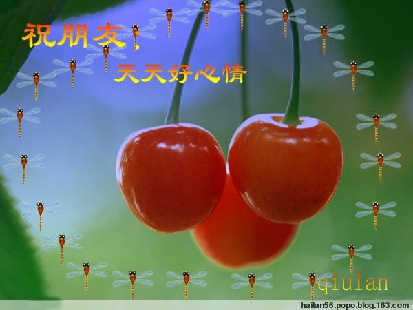 2011年01月12日 - 秋之花语 - 秋之花语的温馨家园