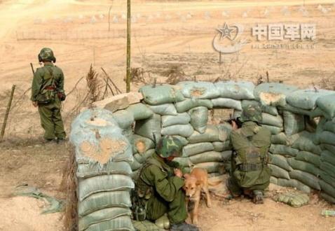 南京军区实兵对抗演练现场 - 披着军装的野狼 - 披着军装的野狼