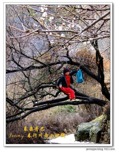 2008川西的春天.4.--春染丹巴(续)--更新中 - jennyyjw - yang-jenny的网易博客