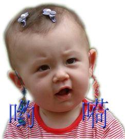 【雪花/原】宝贝快乐! - 雪花芙蓉 - 宠若幽静