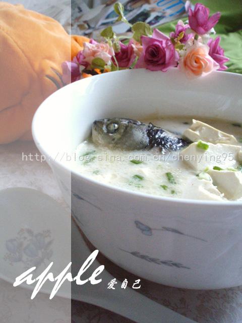 周末减肥法饮食全纪录 round2:牛奶鲫鱼汤 - 可可西里 - 可可西里