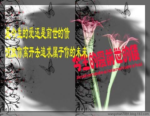【音画原创】今生的爱,前世的债 - 空谷幽兰 - 空谷幽兰
