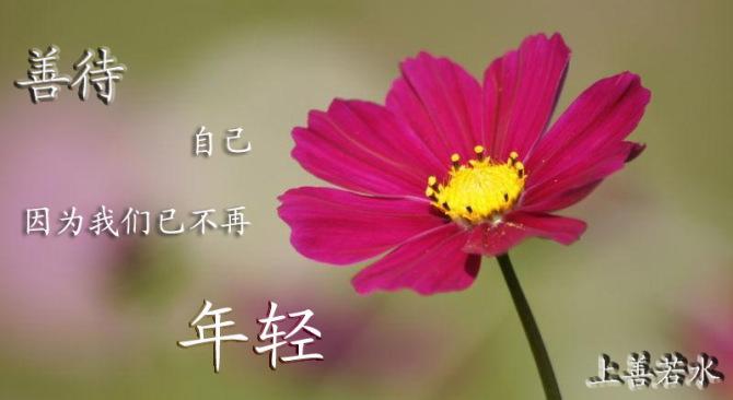 善待自己 因为我们已不再年轻【引用】 - 回归自然 - guoyongbin7235的博客