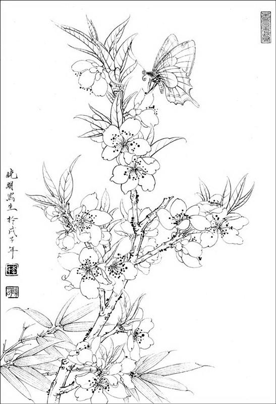桃花手绘图片简笔画