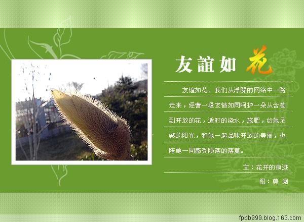 精美圖文欣賞142 - 唐老鴨(kenltx) - 唐老鴨(kenltx)的博客