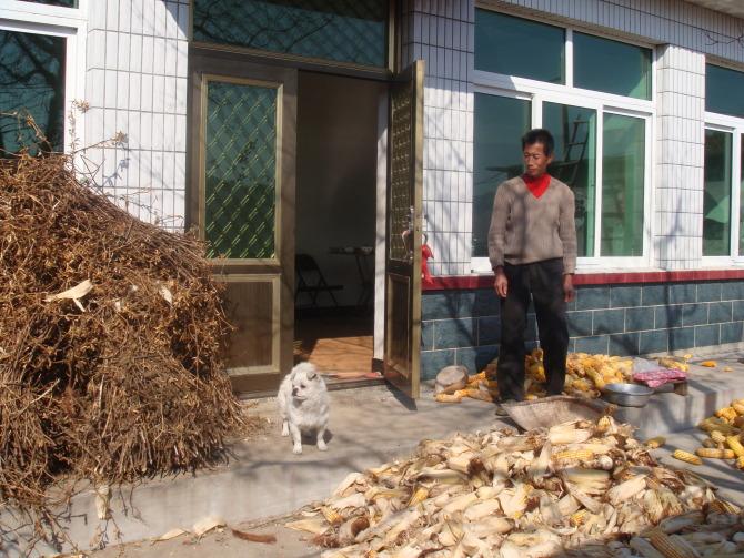 【原创】十六字令四首  秋风霜叶 - 大松 - 我的博客