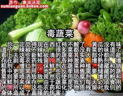 中国人将成全球最大自残民族【图】 - 柏村休闲居 - 柏村休闲居