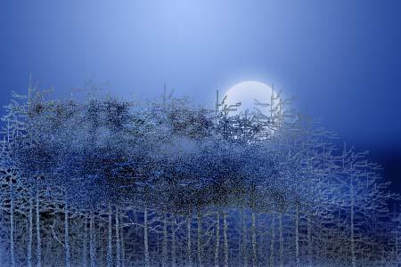 镜像17---《月照霜林》和《关于月照霜林》 - 泥絮 - 泥絮