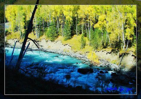 [原创]梦幻西域(10)喀纳斯河《》 - 自由诗 - 人文历史自然 诗词曲赋杂谈