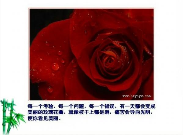 听海的声音[精美图文] - 唐萧 - 唐萧博客